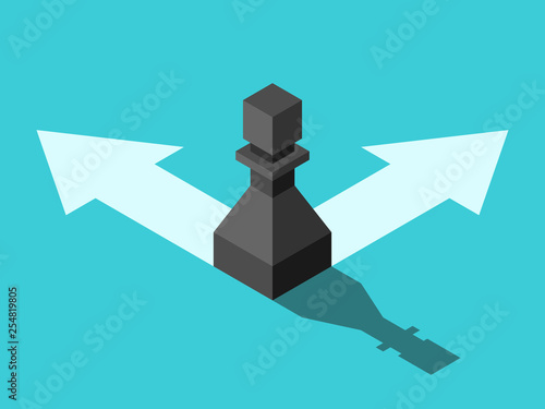 Fotografie, Obraz  Isometric pawn, arrows, choice