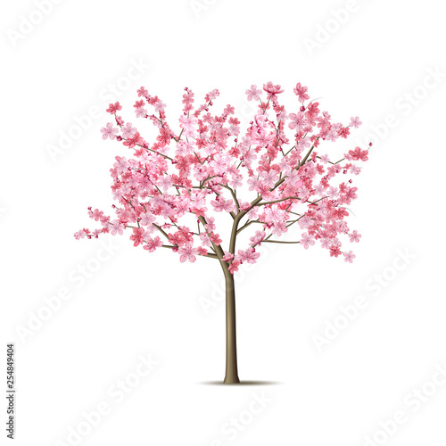 Photographie Vector realistic sakura tree with pink petal