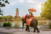 Tourists On An Ride Elephant T...