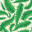 Seamless pattern with leaves of fern on a white background.