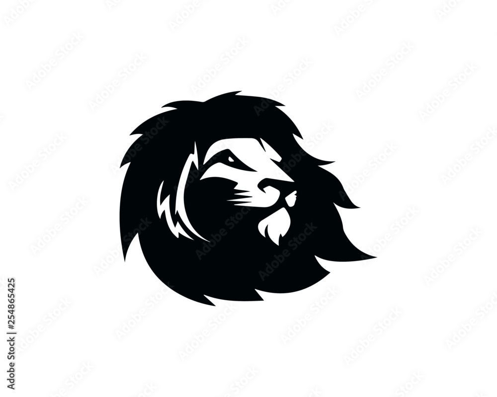 Fototapeta lion