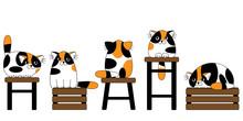 Cartoon Cute Colorful Cats Seamless Pattern