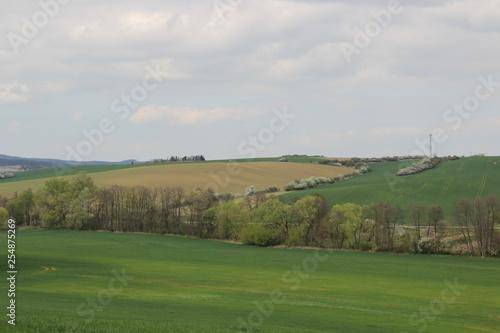 Deurstickers Groene Spring in nature. Photo Czech republic, Europe