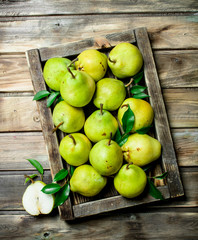 Ripe pears with leaves in tray.