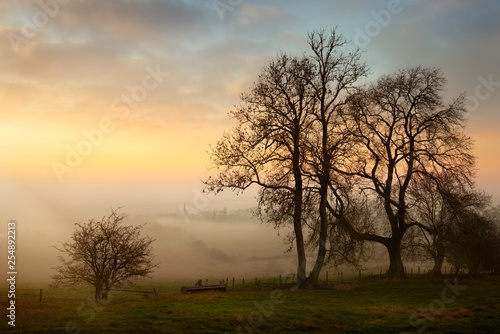 Photo  Misty sunset at Mickleton, Cotswolds, Chipping Campden, Gloucestershire, England