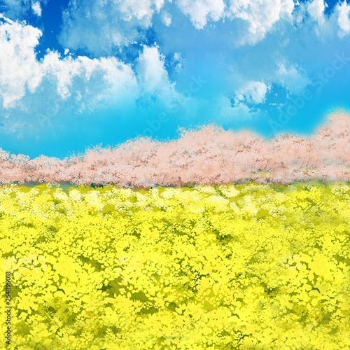 桜 菜の花 菜の花畑 空 青空 雲 イラスト Comprar Esta