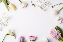 Various Spring Flowers On A White Background. Copy Space.