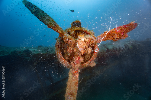 Photographie WWII Bomber Wreck underwater with propeller an scuba diver, near Honiara, Solomo