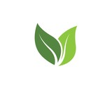 green leaf ecology nature vector icon