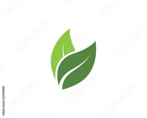 Fototapeta green leaf ecology nature vector icon obraz