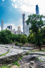 People In Central Park, New York City, USA