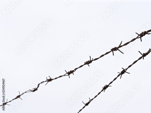 Fotografía  high fence with barbed wire on a white background.