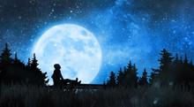 Girl Watching The Stars In Nig...