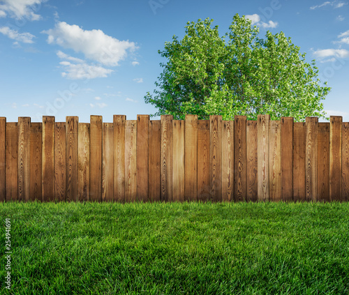 Papiers peints Jardin spring tree in backyard and wooden garden fence