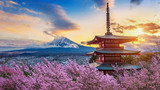 Beautiful landmark of Fuji mountain and Chureito Pagoda with cherry blossoms at sunset, Japan. Spring in Japan.