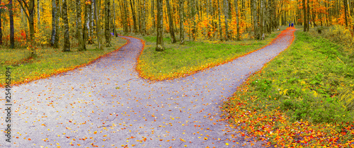 The route in the autumn park diverges into two hiking trails in different directions Fototapeta