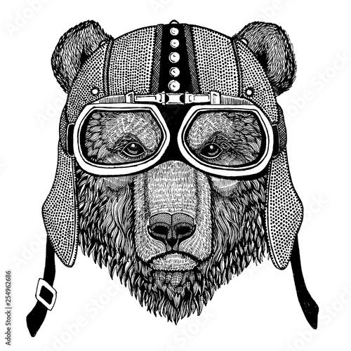 Brown bear Wild animal wearing motorcycle, aero helmet Wallpaper Mural