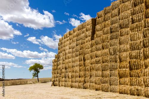 Foto Una pila de fardos de paja formado un muro para ser almacenados en un campo de C