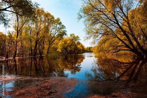 Keuken foto achterwand Baksteen Landscape view of the river Desna in Chernigov with trees