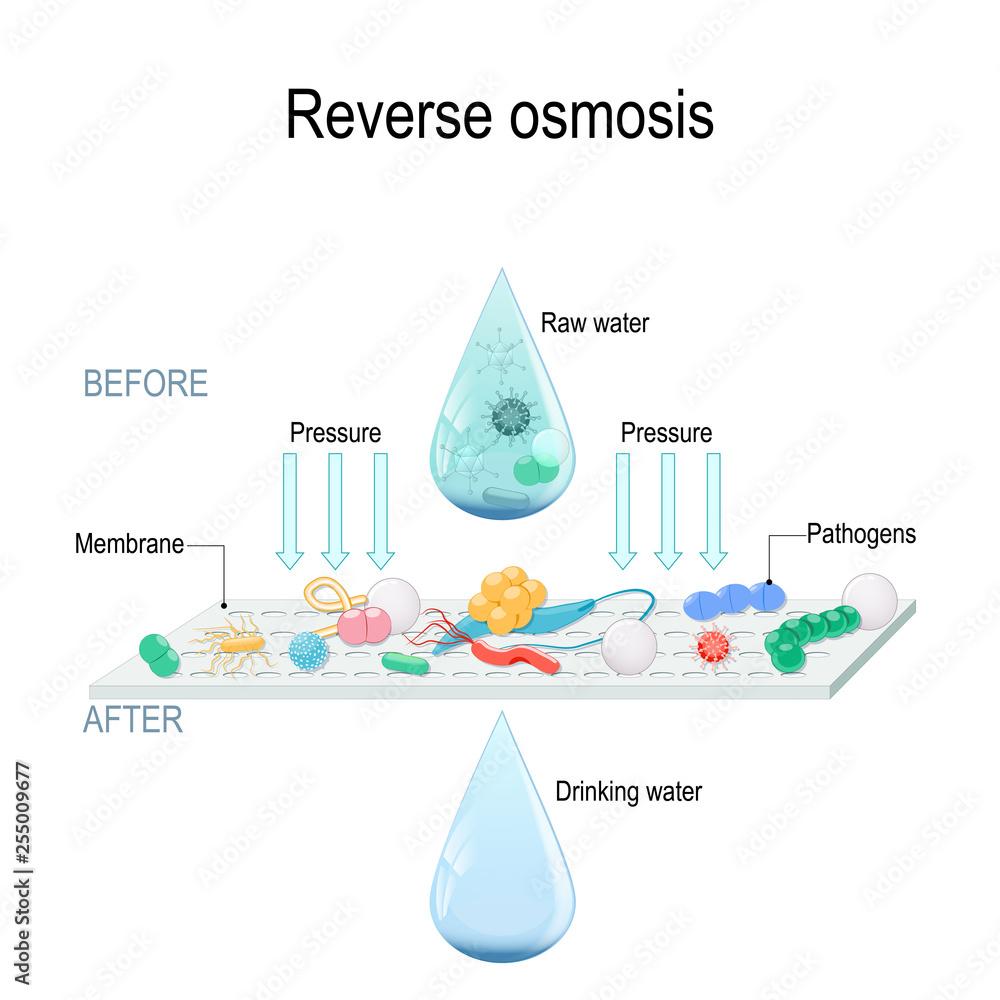 Fototapeta reverse osmosis