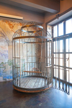 Iron Huge Round Human Cage With A Swing Inside. Bdsm Furniture Made Of Steel