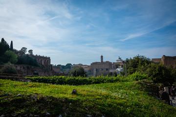 Fototapeta na wymiar Forum Romanum