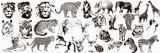 Fototapeta Fototapety na ścianę do pokoju dziecięcego - Big collection of wild animals. Exotic danger African. Tropical. Vector illustration on white background.