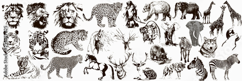 Big collection of wild animals Fotobehang