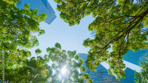 perspective exterior pattern blue glass wall modern buildings with green tree leaves