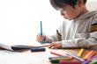 絵を描く事に集中している男の子