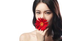 Beauty Makeup Face Portrait