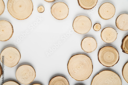 Obraz na plátně  Pine tree cross-sections with annual rings on white background