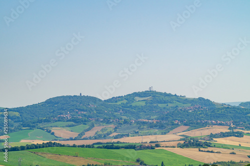 Fotografie, Obraz  Campagne e colline marchigiane