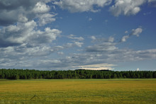 Meadow With Forest And Dramatic Clouded Sky In Background
