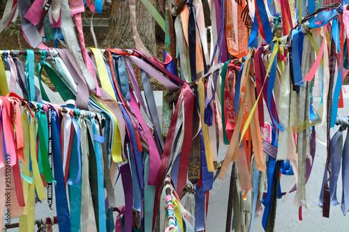 Foto op Plexiglas Paradijsvogel multicolored ribbons tied to tree branches