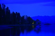 canvas print picture - ニュージーランドのワナカツリー