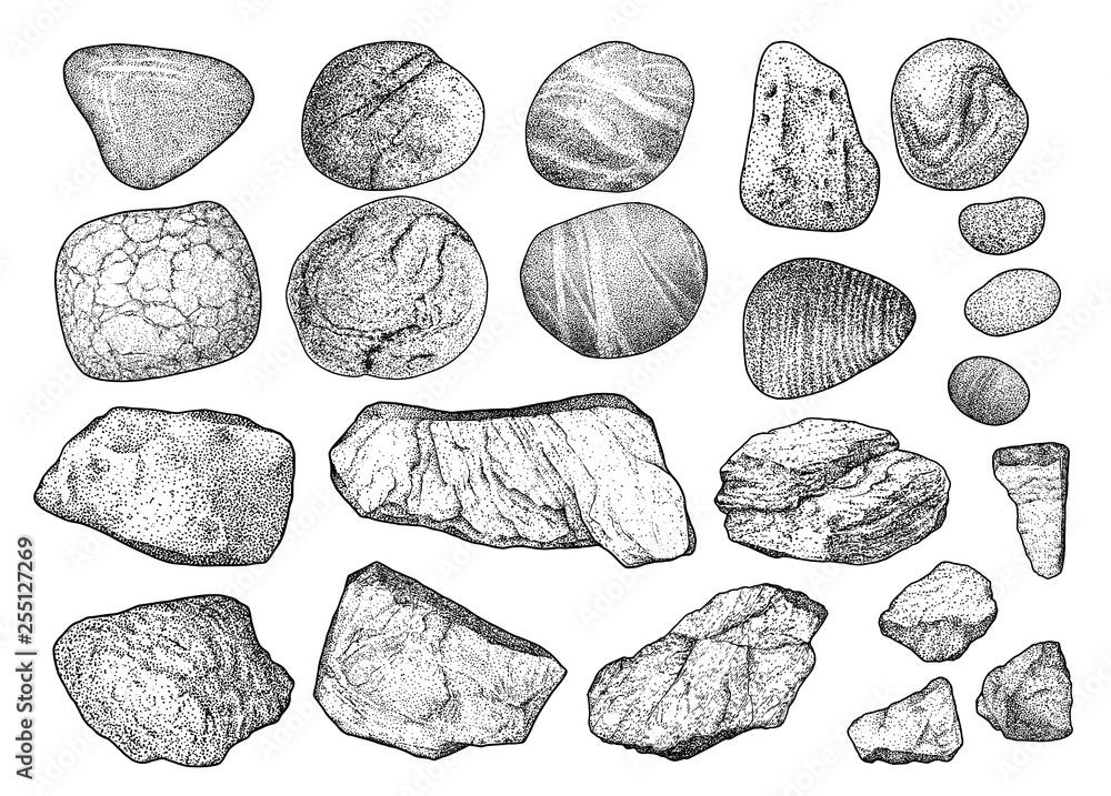 Fototapeta Rock, pebble illustration, drawing, engraving, ink, line art, vector