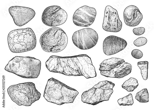 Rock, pebble illustration, drawing, engraving, ink, line art, vector