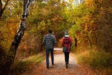 Spaziergang Im Herbst - Wander...