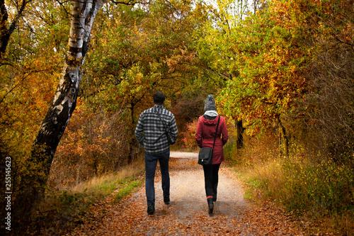 Obraz na plátně  Spaziergang im Herbst - Wandern im Wald