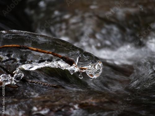 Fotografie, Obraz  ice, icicles in water