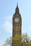 Fototapeta Londyn - Londyn - Big Ben