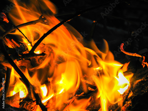 Cadres-photo bureau Dragons Large Fire flame on a black background