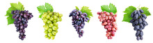 Branch Of Grapes Isolated On W...