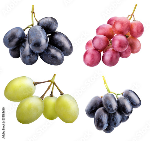 Branch of grapes isolated on white background Fototapete