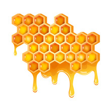 Honeycomb With Flowing Honey