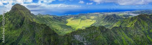 Hawaiians mounts with oceanin background