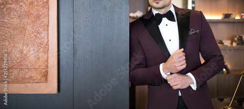Leinwand Poster Man model in expensive custom tailored tuxedo, suit standing and posing indoors