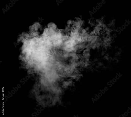 smoke steam fog air background shape black Canvas Print