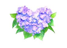 ハート型の紫陽花